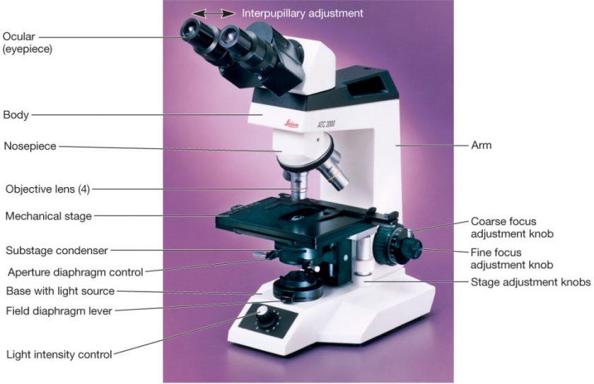 اجزاء تشکیل دهندۀ یک میکروسکوپ نوری